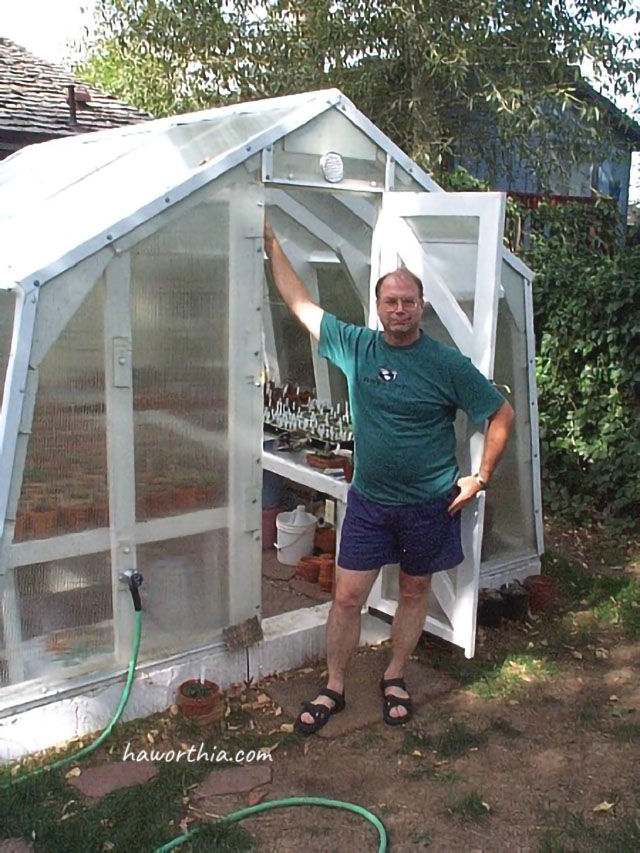 My greenhouse is in my yard in Broomfield, Colorado, just outside Denver. I built it in the summer of 1999. I specialize in Haworthia, with about 500 adult plants and many, many seedlings. This is where I go to enjoy these plants.